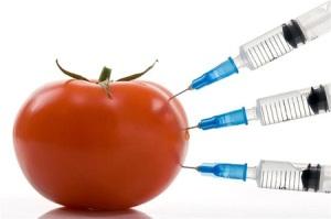 food-toxin